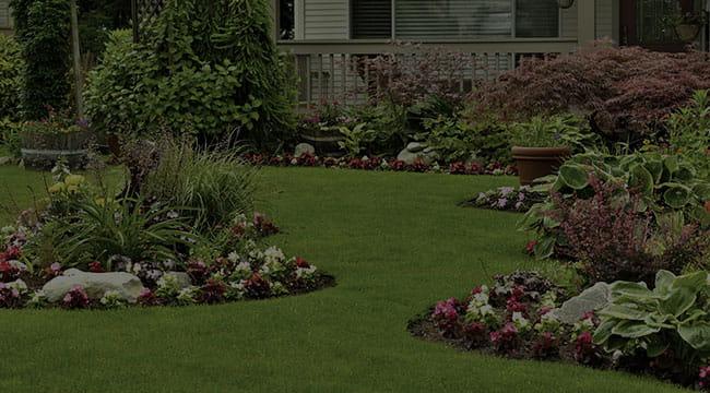 Odenton Landscape Design