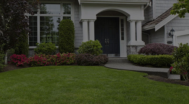 Odenton Landscaping